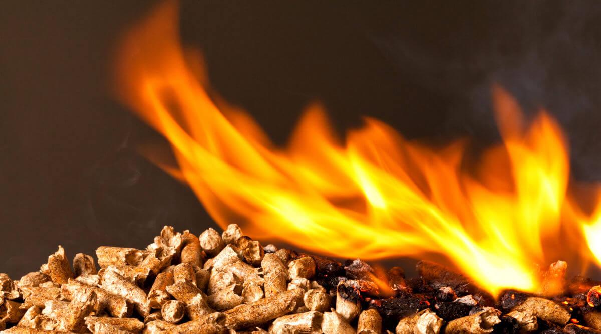 Caldaia A Condensazione Svantaggi perché conviene installare la caldaia a pellet?